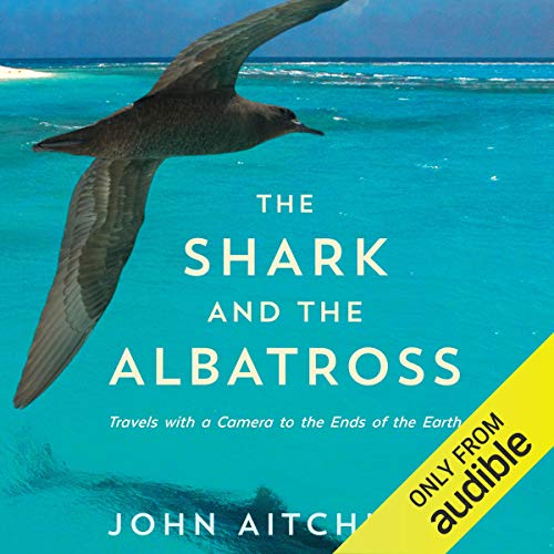 The Shark and the Albatross audiobook cover art