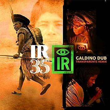 I R 35 Galdino Dub (Transparente Remix) [feat. Tapedave & Jah9]