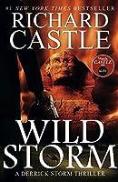 Wild Storm: A Derrick Storm Novel by Richard Castle(2015-04-01)
