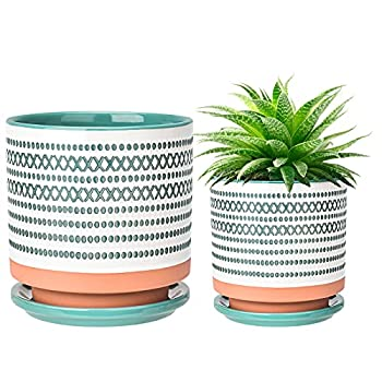 Succulent Pots Small Flower Pots Indoor 6in+4.75in Ceramic Planter Plant Pot with Porcelain Tray Drainage Hole for Snake Plants Jade Plant Herbs Green