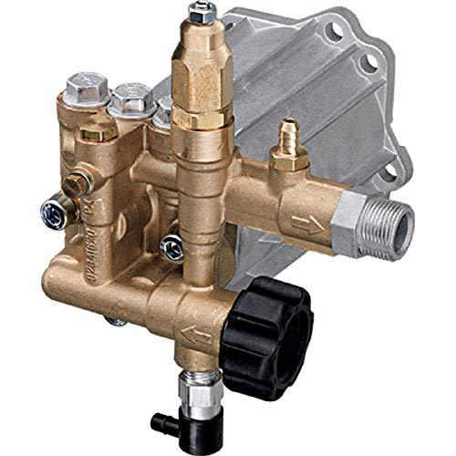 AR ANNOVI REVERBERI , RMV25G30D-EZ , Replacement Plunger Pump Horizontal, 3000 PSI, 2.5 GPM with Easy Start, EZ, Aluminum