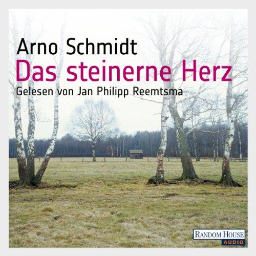 Das steinerne Herz audiobook cover art
