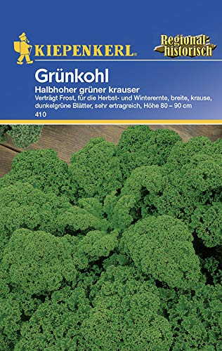 Grünkohl halbhoher grüner Krauser Portion