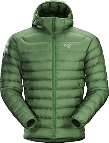 Arcteryx, Cerium LT Jacket Men's, canyon green, S