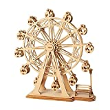 LKNJLL 3D de Madera Rompecabezas Ferris Wheel Modelo for Construir Kit de construcción