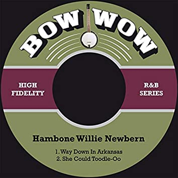 Way Down in Arkansas / She Could Toodle-Oo