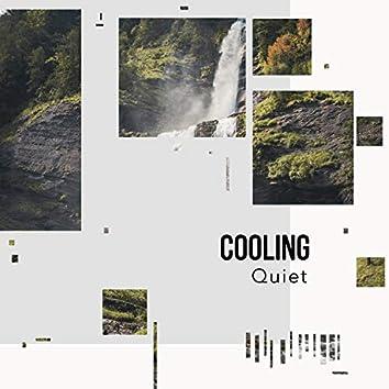 # 1 Album: Cooling Quiet