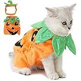 Legendog Cat Halloween Costume,Cat Halloween Apparel Pumpkin Design Funny Pet Clothing Halloween Cat Outfit...