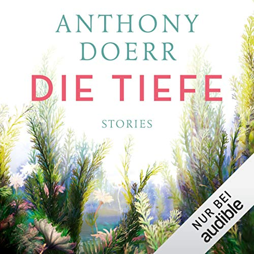 Die Tiefe: Stories  By  cover art