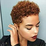 Nicelatus Short Afro Curly Haircuts For Women African American Short Wigs For Black Women Short Brown Curly Hairstyle