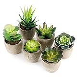 GoMaihe Plantas Suculentas Artificiales, 6 Piezas, Planta Artificial Decorativa, Adecuado para...