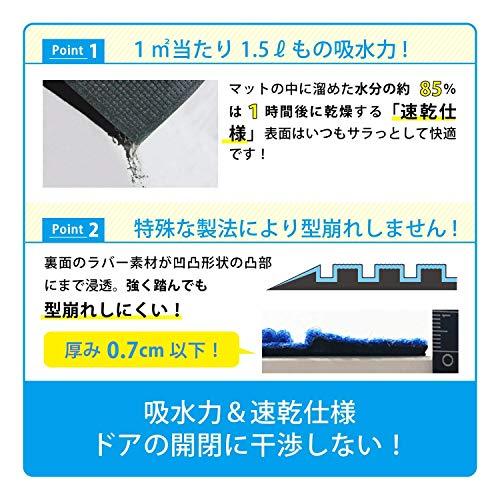 KLEEN-TEX(クリーンテックス・ジャパン)『吸水玄関マットウォーターホースT』