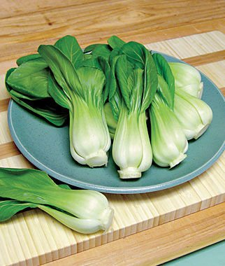 Pak Choy, Also Called Bok Choy 100 Seeds Combo by Seedscare India