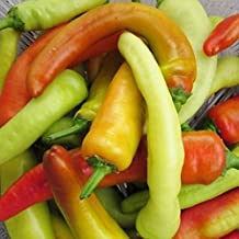 Best hungarian pepper seeds for sale Reviews