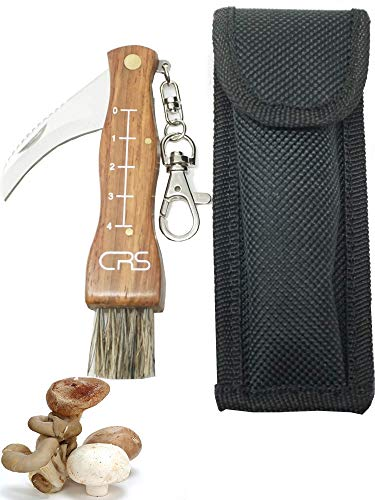 CRS Polizeigeprüftes Pilzmesser mit Bürste/Pinsel zum aufklappen mit Lineal aus rostfreiem Stahl. Kleines Taschenmesser für Outdoor u. Camping | Klappmesser mit gebogener Klinge (Mit Tasche)