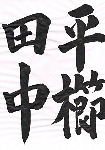 The title of HIRAKUSHI DENCHU in japanese calligraphy japanise calligraphy (Wonder Style) (Japanese Edition)