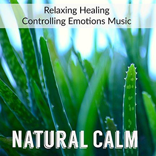 Relaxation Meditation Yoga Music Masters