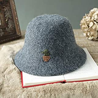 YIXINGSHANGMAO Hat, Female Autumn and Winter Soft Wild, Foldable Basin Cap, Casual Art Retro Elegant hat, Five Colors Optional Warm (Color : Gray)