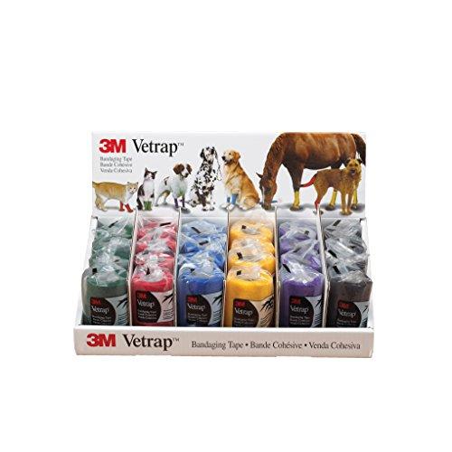 3M Vetrap Klebeband für Hunde, 6 Farben, 24 Roll/Display, sortiert
