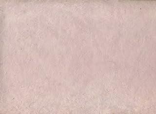 enlever la salet/é pour la Salle de Bain//Piscine//Cuisine//m/énage Yuema 2 pi/èces en Pierre de Nettoyage avec poign/ée Pierre en Pierre Ponce pour Nettoyer Les Toilettes