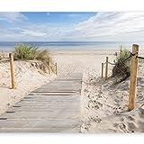 murando - Fototapete Strand und Meer 250x175 cm - Vlies Tapete - Moderne Wanddeko - Design Tapete - Wandtapete - Wand Dekoration - Landschaft Natur c-B-0005-a-b