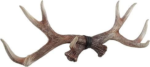 Zeckos Lifelike Deer Antlers Rack Decorative Wall Hook