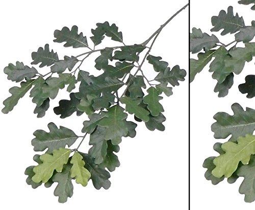 Waldbaum Eichenblattzweig in verschiedenen Grüntönen ohne Eicheln und einer Gesamtlänge inkl. Stiel von ca. 70cm, B1 - Kunstpflanze Kunstbaum künstliche Bäume Kunstbäume Gummibaum Kunstoffpflanzen Dekopflanzen Textilpflanzen Textilbäume Pflanzen aus