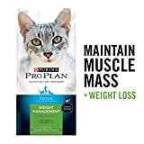 Purina Pro Plan Weight Control High Protein Dry Cat Food, FOCUS Weight Management Chicken & Rice Formula - 7 lb. Bag