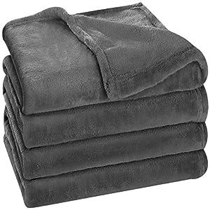 Utopia Bedding Fleece Blanket Queen Size Grey 300GSM Luxury Bed Blanket Anti-Static Fuzzy Soft Blanket Microfiber by Utopia Bedding