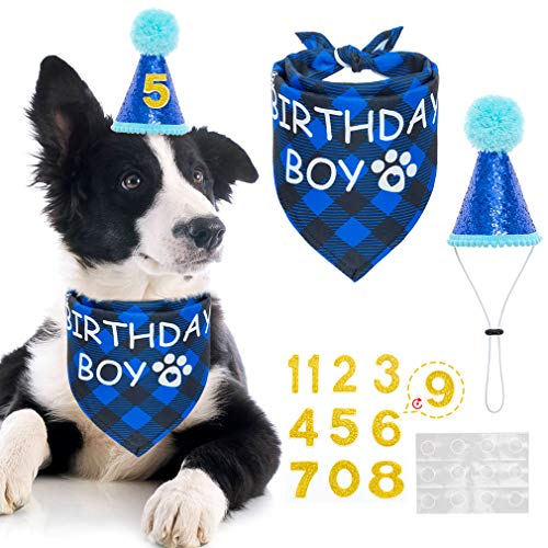 Mihachi Dog Birthday Bandana with Hat - Party Supplies Birthday Set for Pet Puppy Cat for Birthday Party Blue