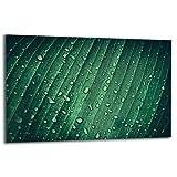 TMK | Placa de 80 x 52 cm 1 pieza para cubrir la vitrocerámica, protección contra salpicaduras, placa de cristal decorativa, tabla de cortar, verde gotas