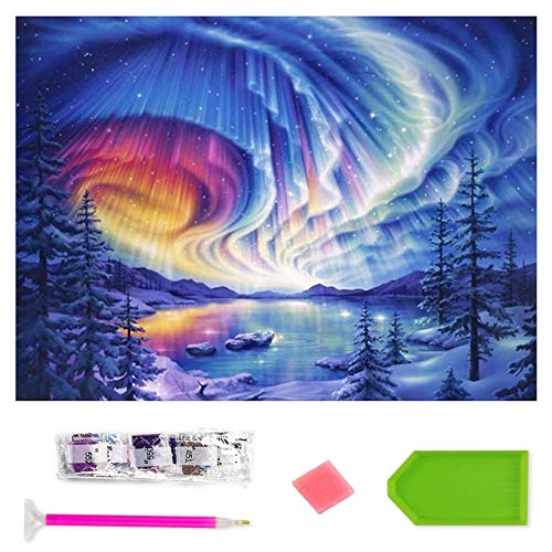 Rayber Kit de pintura de diamante 5D, diseño extraterrestre de diamante, para manualidades, pintura de diamante, cuadro de diamantes de imitación, bordado de mosaico (30 x 40 cm)