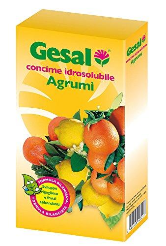 GESAL Concimi Idrosolubili Agrumi, Bianco, 7,1x16,2x18,5 cm