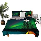 DRAGON VINES Bed Sheets Queen Cotton Aurora Borealis Bed Sheets Full Set Camping Tent Under Magnetic Field Nature Picture W90 xL90 Lime Green Dark Blue Earth Yellow