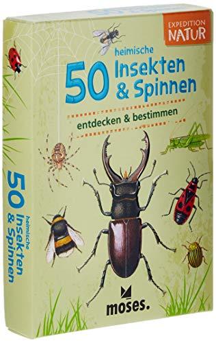 Moses 9723 Expedition Natur - 50 heimische Insekten und Spinnen| Bestimmungskarten im Set | Mit spannenden Quizfragen