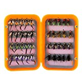 Piscifun 40pcs Wet Flies Fly Fishing Lures Bass Salmon Trouts Sinking Flies Assortment with Fly Box Multicolor 10# Hook