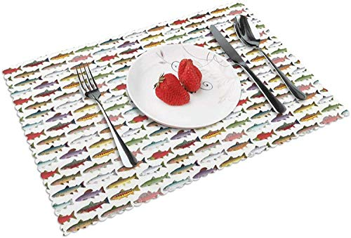 Rainbow Colored Trout and Salmon Placemats Set of 4 for Dining Table, Durable Washable Woven Vinyl Placemats for Kitchen Table, Non-Slip Heat Resistant Easy to Clean