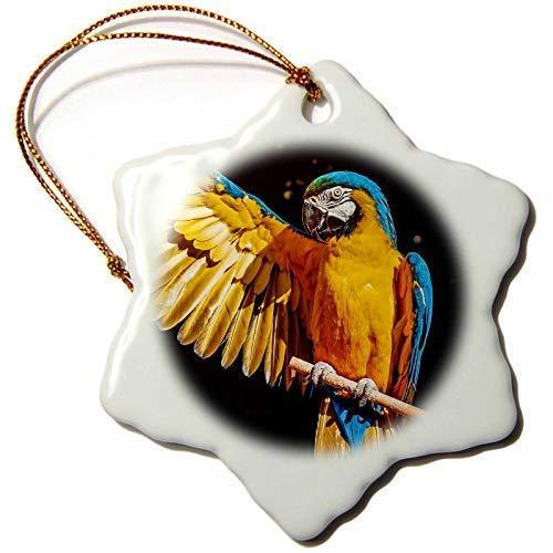 Dant454ty Blauwe Macaw Vogel Papegaai Met Gele Vleugels Veer Kerst Ornamenten voor het Huis 2019 voor Vrouwen Vrienden Kids Kerstboom Ornament