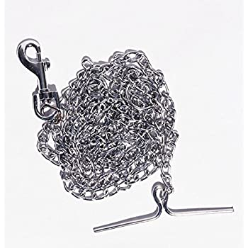 LoveFurPaws Metal Chain Leash for Small Dog (14)