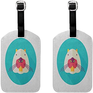 Pack of 2 Durable luggage tag Colorful Fashion match Beaver Portrait with Small Eyes and Giant Teeth Cartoon Style Animal Illustration Multicolor