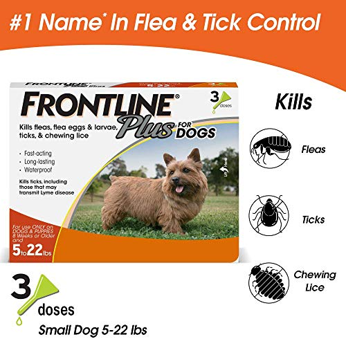 Frontline Plus for Dogs Small Dog