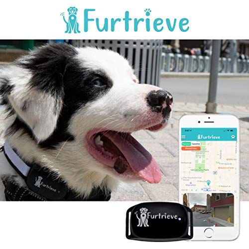 Furtrieve: The World's Most Comprehensive Pet Tracking System