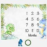 Dinosaur Month Blanket Boy, Baby Monthly Milestone Blankets, Infant Dino Nursery Tyrannosaurus Rex, Triceratops, Nap Mat Girl, Photo Props