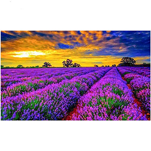 Diamond Art Painting Kits for Kids Full Drill Large Size 5D Diamond Painting Lavender Field 40x80cm/16x32in Round Drill Rhinestone DIY Diamond Embroidery Cross Stitch Arts for Home Wall Decor L3763