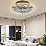 Ceiling Fan with Lights, Enclosed Ceiling Fan Light, Low Profile, Acrylic Remote Control