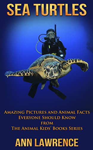 Sea Turtles: Amazing Pictures and Animal Facts Everyone Should ...