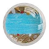 Étoile de mer coquille de sable Perillas de extracción de para gabinetes, armarios, puertas y cajones de muebles: se venden como un paquete de 4 perillas