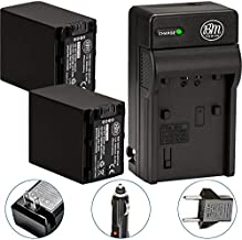 BM Premium 2-Pack of NP-FV100 Batteries and Battery Charger for Sony FDR-AX53 HDR-CX455/B HDR-CX675/B HDR-CX220 HDR-CX230 HDR-CX260V HDR-CX290 HDR-CX330 HDR-CX380 HDR-CX430V HDR-CX580V HDR-CX760V HDR-CX900 HDR-PJ230 HDR-PJ260V HDR-PJ340 HDR-PJ380 HDR-PJ430V HDR-PJ540 HDR-PJ580V HDR-PJ650V HDR-PJ670/B HDR-PJ710V HDR-PJ760V HDR-PV790V HDR-PJ810 HDR-TD30V FDR-AX33 FDR-AX100 Camcorder