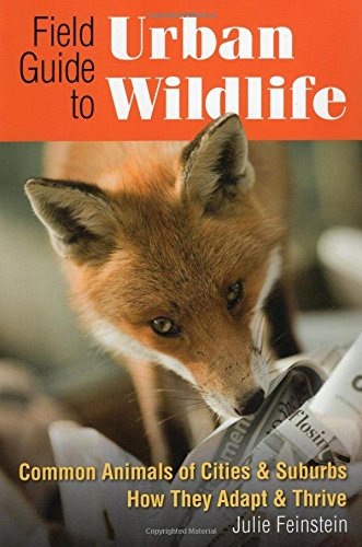 Field Guide to Urban Wildlife: Common Animals of Cities & Suburbs How They Adapt & Thrive