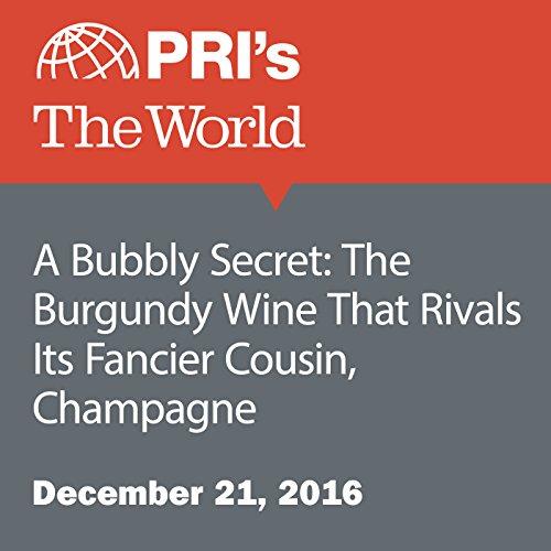 A Bubbly Secret: The Burgundy Wine That Rivals Its Fancier Cousin, Champagne audiobook cover art